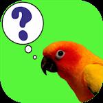 Download ParrotQuiz APK